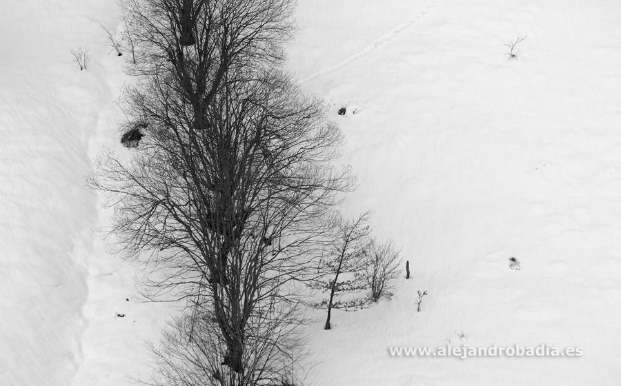 Somiedo nieve-47-ok