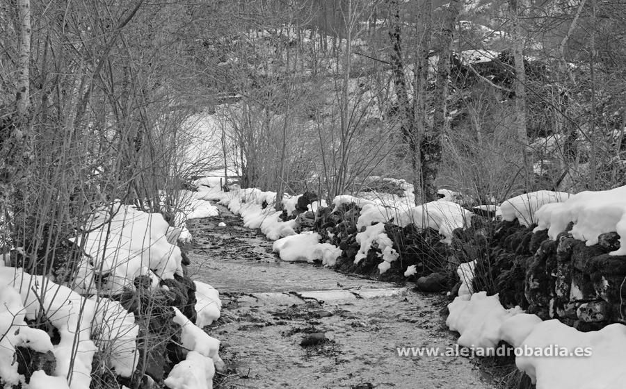 Somiedo nieve-57-ok