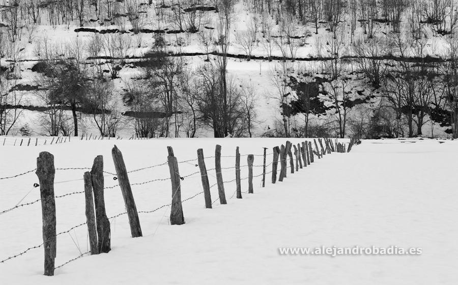 Somiedo nieve-63-ok