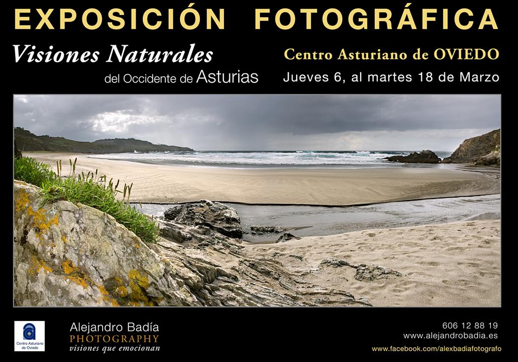 Exposición en el Centro Asturiano de Oviedo