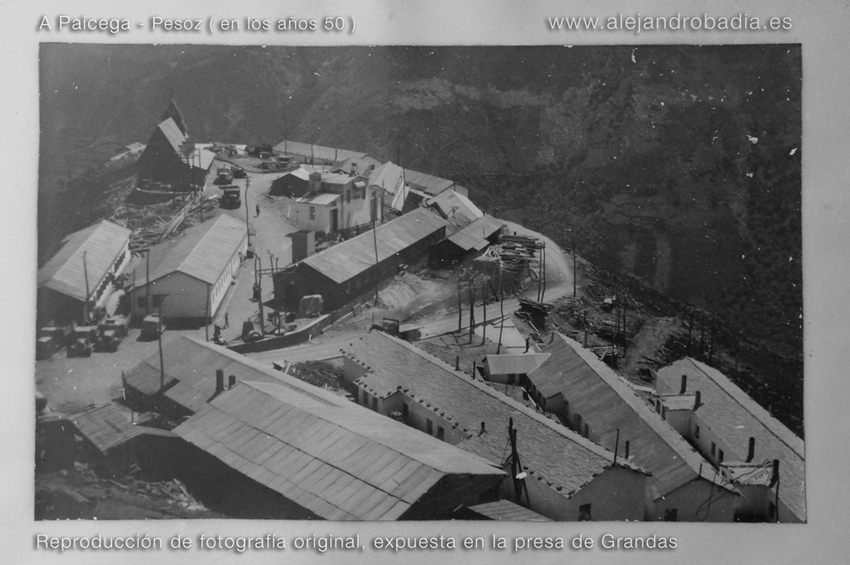 A-Paicega-30-w