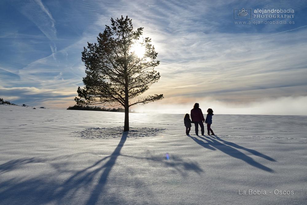 Bobia-nieve-20-w