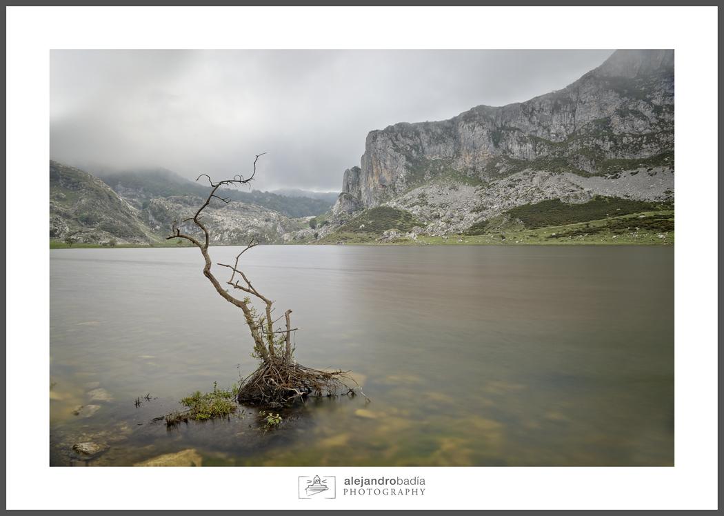 Lago-Ercina-ART-01