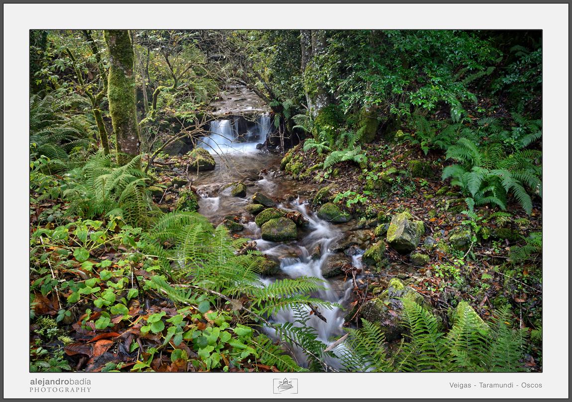 ruta-del-agua-veigas-06-w