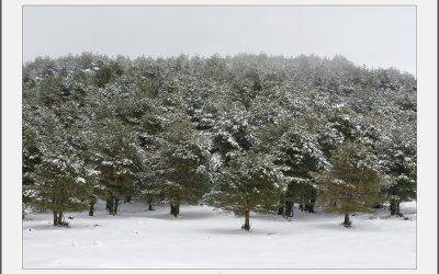 Invierno en la Bobia ,Oscos, y Penouta , Boal