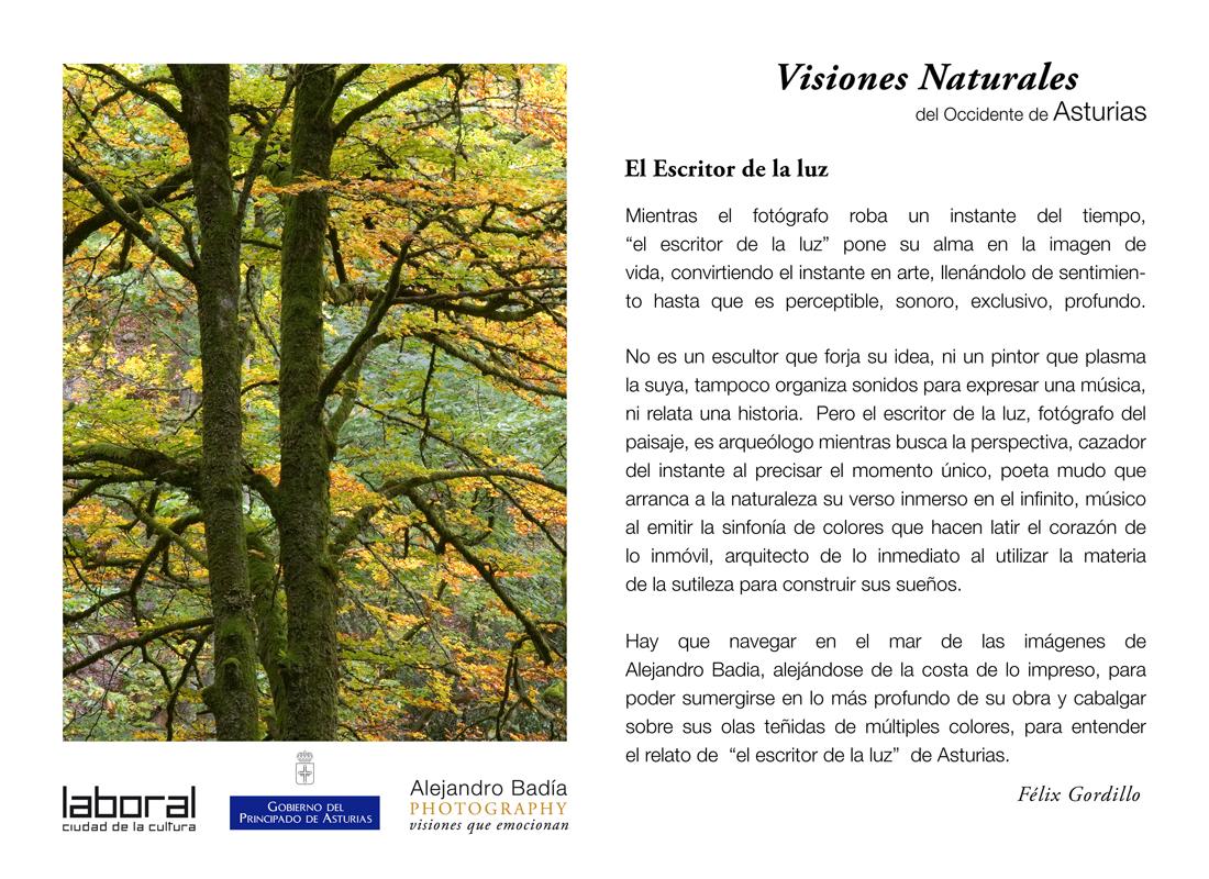 Exposición Visiones Naturales en La Laboral de Gijón