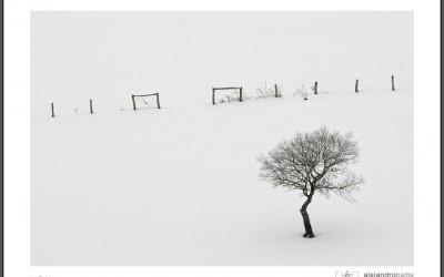 La Bobia en Blanco y Negro