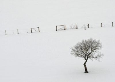 Bobia-Febrero-30
