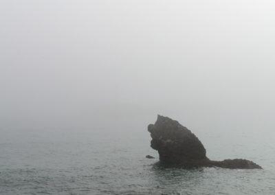 El mounstruo del mar