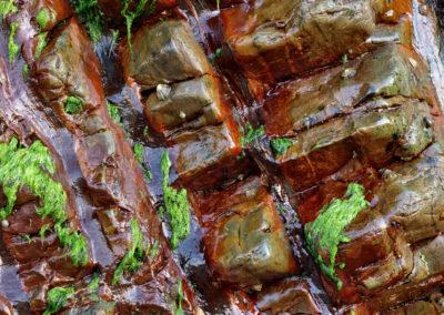 Fluidos rocosos