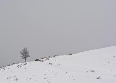 La Bobia-Febrero-2018-25