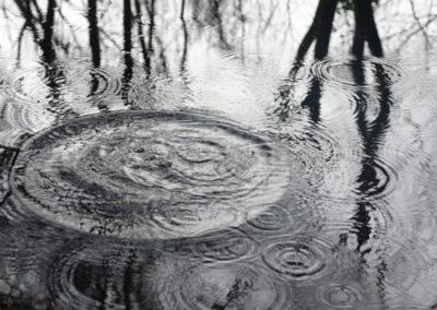Por fin lluvia