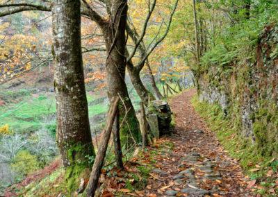 Ruta del Agua-Taramundi-34