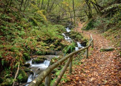 Ruta del Agua-Taramundi-70