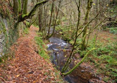 Ruta de la seimeira en Santa Eulalia de Oscos