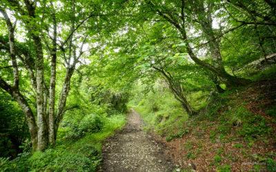 Rutas de verano por Asturias