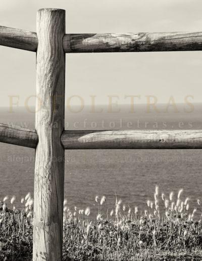 Fotoletra-F-web_01