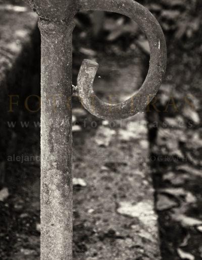Fotoletra-P-web_16