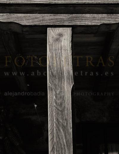 Fotoletra-T-web_04
