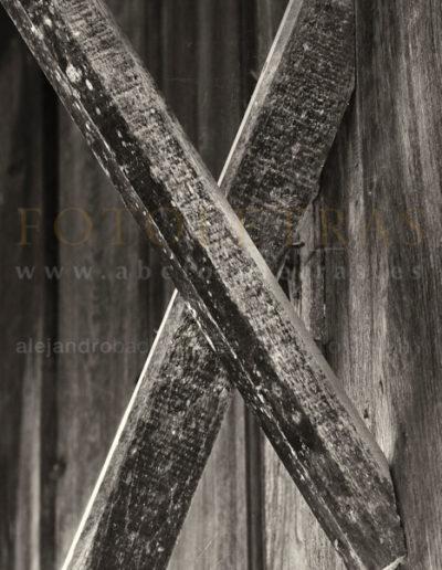 Fotoletra-X-web_19